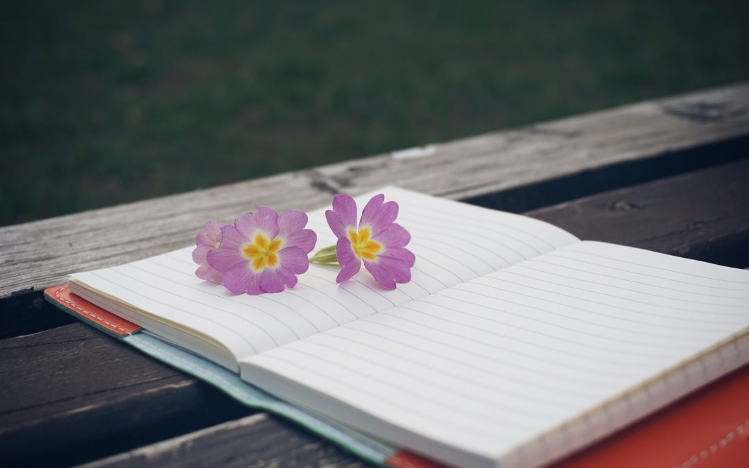 Renew Your Writing Goals with Spring Courses: Part 2
